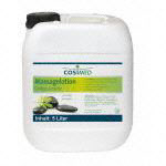 Massagelotion Ginkgo-Limette, 5 l